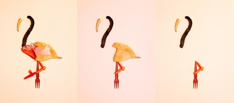 Essence of a flamingo